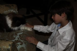 Spencer loved the cats and spent a long time with vivaldi the cat