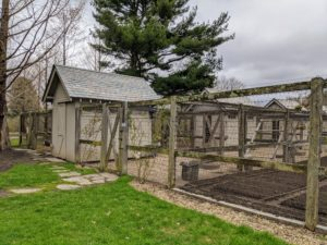 The poultry complex down by my vegetable gardens includes four large coops and various hutches - all completely fenced and netted for the utmost protection. I keep my chickens, guinea hens and my geese down in this area.