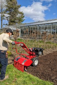 "I always rototill the beds before I plant them. Rototilling is one method of turning up the soil. Regular tilling over time can improve the soil structure. This Troy-Bilt ""Big Red"" model has an adjustable tilling depth of up to seven inches."