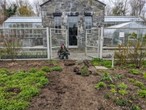The first step is to put up the jute twine which will guide the placement of the bricks. I wanted one path to be about three feet wide, and the other about five feet wide to accommodate wheelbarrows and other gardening equipment.