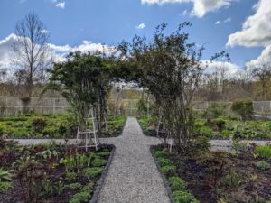This is the view looking down the main path - the bricks and gravel give it a more formal appearance. I can't wait to see how it looks when all the flowers are in bloom.