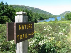 The trail around Jordan Pond begins near the Jordan Pond House.  It's so fun and convenient to enjoy tea and popovers after a vigorous hike.