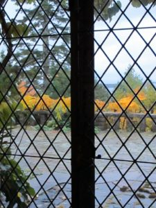 A view through the leaded glass windows out onto the terrace - That bright yellow foliage is the changing leaves of the kiwi vines that cling to the terrace.
