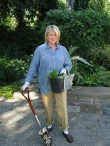 Here's a nice photo of me taken just having completed planting in my 'white garden.'