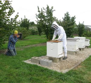 I'm all zipped into my protective beekeeper garb and carefully lifting the cover off of a hive.