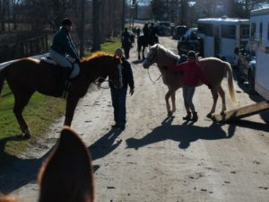 We were parked along Baxter Rd. and were preparing to mount our horses.