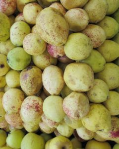 Fragrant and yummy guavas were everywhere in the market.