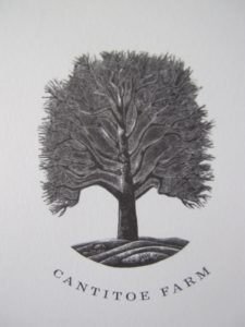 This lovely stamp of my farm's symbol, the sycamore tree, adorns each dinner menu.