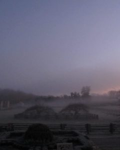 A veil of frosty mist draped over the paddocks.