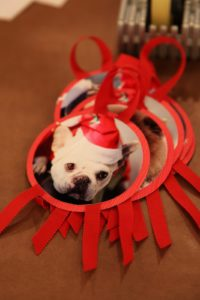 Kristin showed us how to make these adorable pet ornaments.