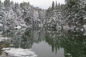 The following photos were taken earlier in the winter.  This is a lovely reflection at Little Harbor Brook.