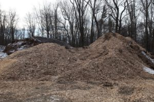 And this large pile is all of the wood chips from the branches of all those fallen trees.