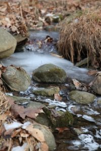 The gurgling streams on the property are now covered with ice.