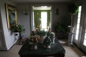 The rest of the house was decorated very nicely with potted plants.