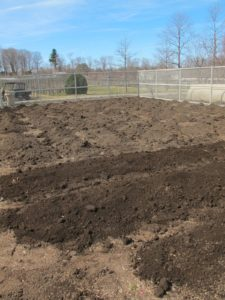 The rich compost is made right here at the farm.