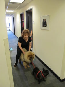 Joy Behar was happy to see the dogs.