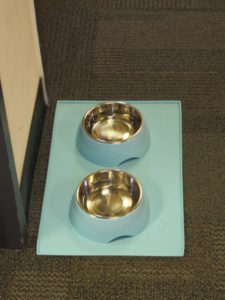 Water bowls from the Martha Stewart Pets line, available at PetSmart, were waiting outside the dressing room at The View.