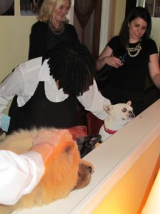 Susan Magrino and Kelly Galvin look on as Whoopi Goldberg says hello to the dogs.