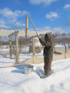 Chhiring was busy filling the bird feeders along the pergola.  He uses a long pole with an attached hook.