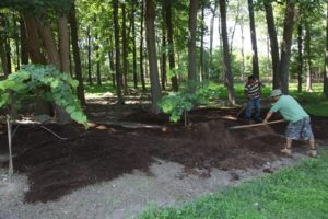 Chhiring and Pete have been weeding and mulching like crazy.