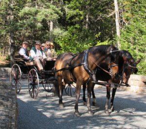 Here I am sitting alongside David Rockefeller, enjoying an exhilarating carriage ride through Acadia National Park.  Sem Groenewoud, David Rockefeller's carriage driver, sitting to his right, along with Colin & Nancy Campbell.