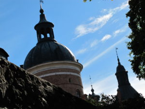 The roof of the castle is domed, and turreted, and very beautiful.