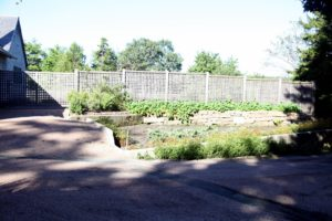 The utility area is also where you find the cutting garden and kitchen garden.  This is where herbs grow.