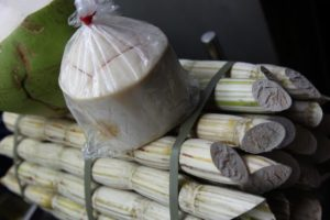 Coconut and sugar cane