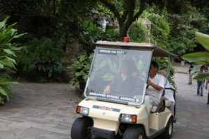 Before entering the National Orchid Garden, principal botanist Dr. See Chung Chin took me for a little spin.