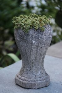 An antique urn filled with tiny succulents sits upon the wall surrounding the white garden.