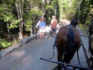 The network of forty-five miles of gravel and crushed rock carriage roads of Acadia are also enjoyed by cyclists.