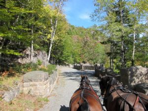 John D., a skilled horseman, himself, wanted to travel through Acadia National Park by horse and carriage on motor-free roadways.