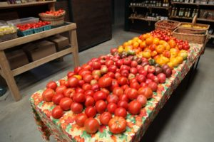 A great selection of perfect tomatoes