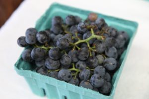 Concord grapes are in season now.