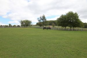 The farm is situated on beautiful rolling land.
