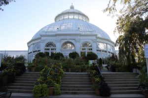 The amazingly beautiful Enid A. Haupt Conservatory is temporarily closed through the autumn for planned structural and interpretive refurbishment.
