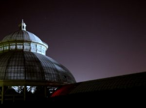 The dome at night against a starry sky