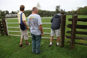 The next stop was one of the paddocks where the horses graze.