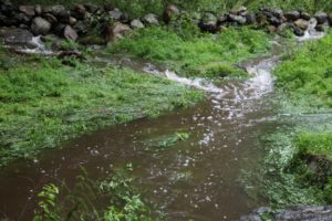 Three small streams converging