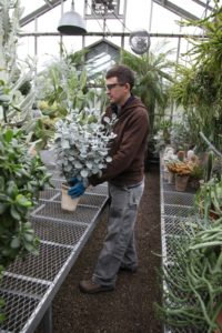 Shaun and his crew have been busy organizing all of the tropicals.