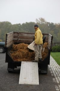 The used bedding is taken to the compost yard.