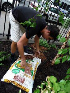 And the designated mulch spreader