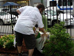 Mitch spreading mulch