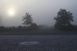 A thick, foggy morning at the stable