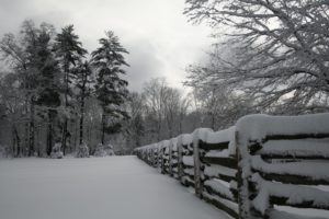 Another silvery shot of downy snow upon the paddock fencing