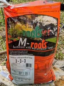 Here, we use M-Roots with mycorrhizal fungi, which helps transplant survival and increases water and nutrient absorption.