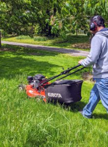 Here's Carlos mowing the lawn just down the carriage road from my tree peony and azalea garden. This mower has a powerful Kawasaki engine, cast aluminum wheels and decks, and edge guards to protect the machine.