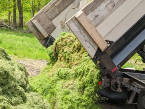 All the grass clippings are transported to the compost pile where they will be turned into nutrient-rich compost and mulch for use as dressing in the gardens. We are very eco-friendly here at the farm and work hard to use, reuse, repurpose, and recycle everything we can.