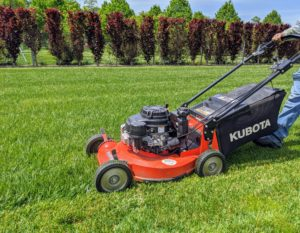 When mowing, remember to avoid scalping the grass, which means cutting it too short. A scalped lawn is vulnerable to grass burn, diseases, and weed infestation. Scalped turf also tends to be more weak and sparse. Grass that's consistently cut too short will have a poorly developed root system, which makes the lawn more susceptible to serious damage from drought or high temperatures.