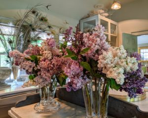 Here are two arrangements made over the weekend and placed in my servery next to my kitchen. These lilacs fill the entire room with color and fragrance. See more of these arrangements on my Instagram page @MarthaStewart48.